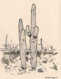 Danny_Martin_cactus.png